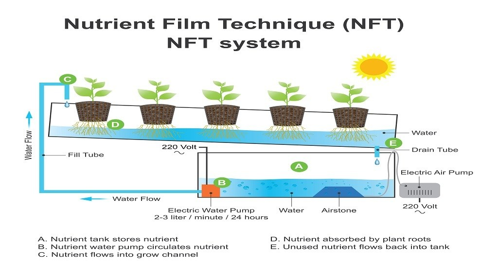 NFT or Nutrient Film Technique Setup