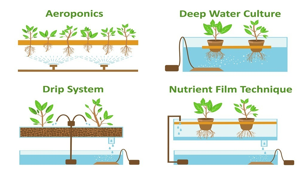 Different Types of Hydroponic Systems
