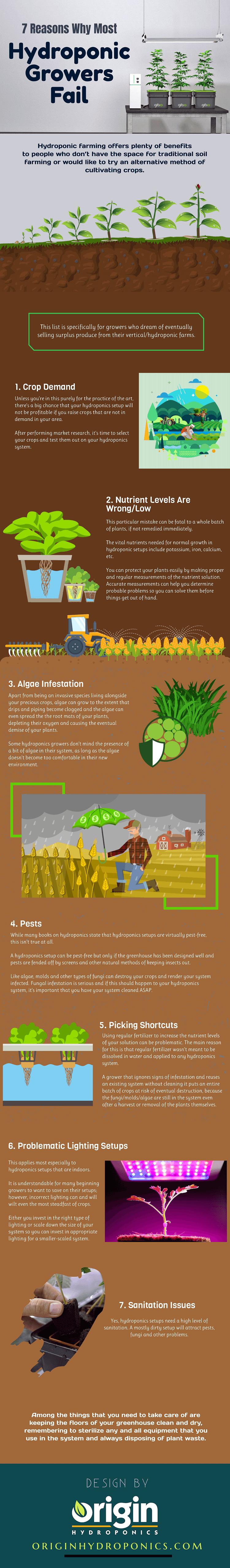 hydroponics infographic
