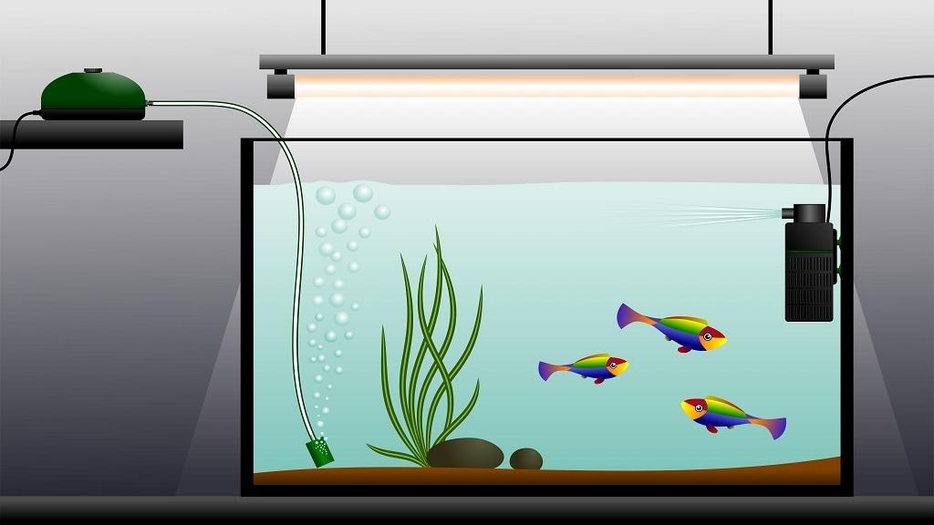 best aquarium heater for aquaponics fish tanks 2019 origin hydroponics
